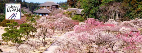 日本三名園について調べてみた。